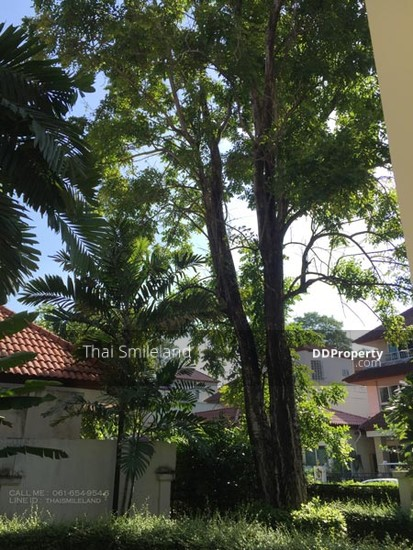 3 Bedroom Detached House in Prawet, Bangkok house for rent, bangna,on nut,villa nakarin  71492868