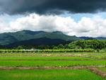 Incredible Mountain Views for Sale--1 Rai