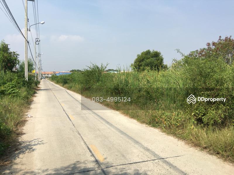 ถนนคลองด่านบางพลี #16889360