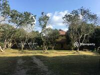 ให้เช่า - ให้เช่า บ้านริมน้ำ สันทราย เชียงใหม่ บรรยากาศธรรมชาติ บ้านสวน วิวทะเลสาบ 25, 000 บาท