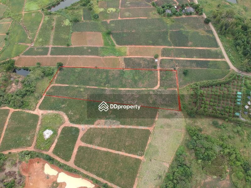 7-5-rai-land-for-sale-with-pineapple-farm #71637158