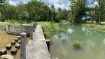 Land along canal 3-1-20Rai (1, 420 sqm)