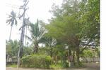 2 BR Single House with Land 10, 148 sqm. near Beach [920121018-22