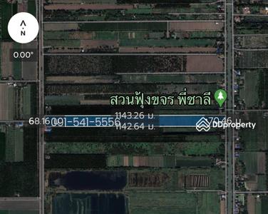 ขาย - ขายที่ดิน 49-1-88 ไร่ ติดถนนชลประทานคลอง 9 ฝั่งตะวันตก หนองเสือ ใกล้สวนฟุ้งขจร ไร่ละ 600, 000 บาท