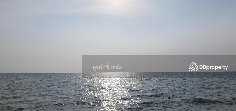 ที่ดินนาจอมเทียน 6 ติดทะเลนาจอมเทียนหาดทรายทองพื้นที่ 14-0-87 ไร่ ข้างโรงแรมทรายสวรรค์ #71494870