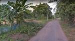 ขายด่วน ! !! ! ที่ดิน 5 ไร่ อำเภอนางรอง ติดถนน ใกล้ชุมชน ป่ารักน้ำ, วงเวียน