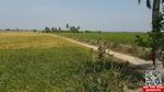 """ขายที่ดินเปล่า อ. โพธิ์ทอง จ. อ่างทอง พื้นที่21ไร่ 64ตรว. ขาย4. 5ล้านบาท อยู่บนถนนเส้นอำเภอโพธิ์ทอง-แสวงหา ใกล้กลุ่มแม่บ้านเกษตรกรศรีพราน """"ขายต่ำกว่าราคาตลาด"""""""