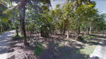 ขายด่วน ที่ดิน  4 ไร่เศษ เป็นสวนยางและปาล์ม แปลงมุม   อ. ท่าแซะ จ. ชุมพร