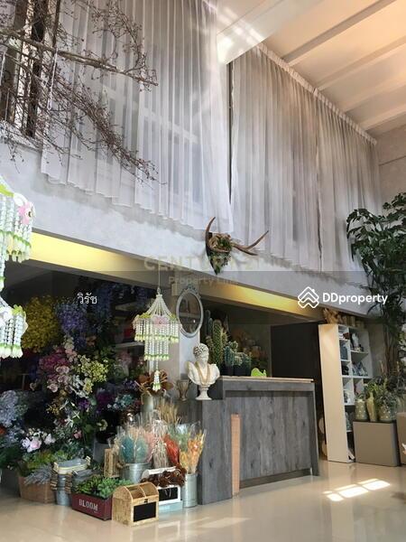 อาคารพาณิชย์ สุขุมวิท 39 #73451508