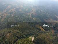 ขาย - ที่ดินสวนป่าห้วยศอกรวม368ไร่(แปลงที่สวยที่สุดแปลงสุดท้ายของด่านซ้าย)พร้อมบ้านพักตากอากาศบนเนินเขา