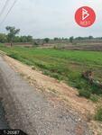 ขายที่ดินติดถนนใหญ่ 10 ไร่ 1 งาน 11. 0 ตารางวา ศรีมโหสถ ปราจีนบุรี
