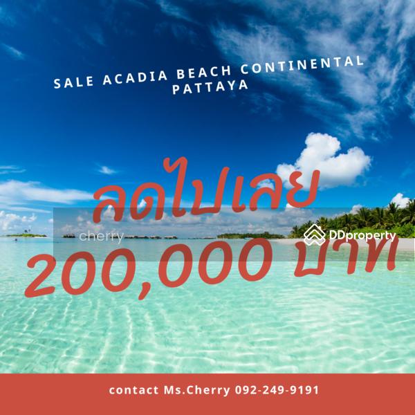 acadia beach continental #78313372