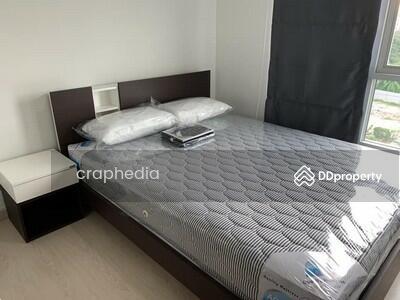 ให้เช่า - YOG-Pamr251 ให้เช่า Deco Condominium เดคโค่ คอนโดมิเนียม สุขุมวิท