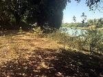 ขาย ที่ดินแปลงใหญ่ ขนาดที่ดิน21 ไร่ 1 งาน 93 ตารางวา ที่ติดแม่น้ำสงคราม อ. ศรีสงคราม จ. นครพนม