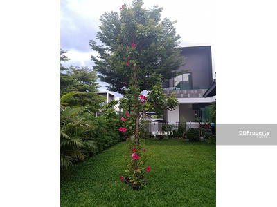 For Rent - AHD1161 Townhome two storey for rent with in the city center.