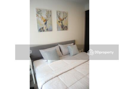 ให้เช่า - ให้เช่าQuintara Treehaus สุขุมวิท42 13000 บาท แต่งครบห้องสวย มีเครื่องซักผ้า