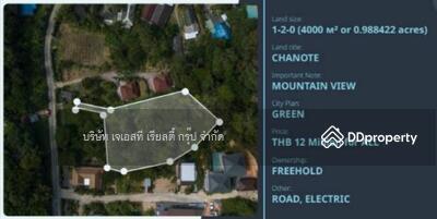 ขาย - 800333T ขาย ที่ดิน 1-2-60 ไร่ กะทู้ ภูเก็ต