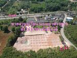 R086-286 ขายที่ดิน พร้อมสวนทุเรียน 4 ไร่ ใกล้ถนนสุขุมวิท 50 เมตร  อ. นายาอาม จ. จันทบุรี