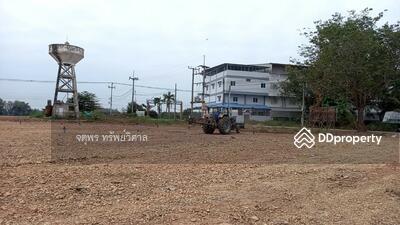 ขาย - ขายที่ดินราคาถูก โอกาสทอง มีเงินแสนเดียวก็ซื้อที่มีโฉนดได้ ในหมู่บ้านบึงพระ เมืองใหม่พิษณุโลก