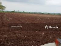 ขาย - ขายที่ดินถูกที่สุดในวังม่วง  ต. วังม่วง จ. สระบุรี ใกล้ฟาร์มโคนมซีพี