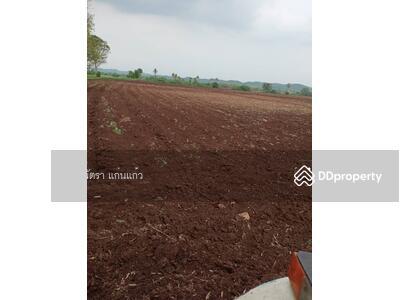 For Sale - ขายที่ดินถูกที่สุดในวังม่วง  ต. วังม่วง จ. สระบุรี ใกล้ฟาร์มโคนมซีพี