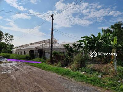 ขาย - R039-092 ขายถูกที่สุดในโครงการ ที่ดินนานาการ์เด้นท์ 600  ตร. ว. ต. หลักหก เมือง  ปทุมธานี