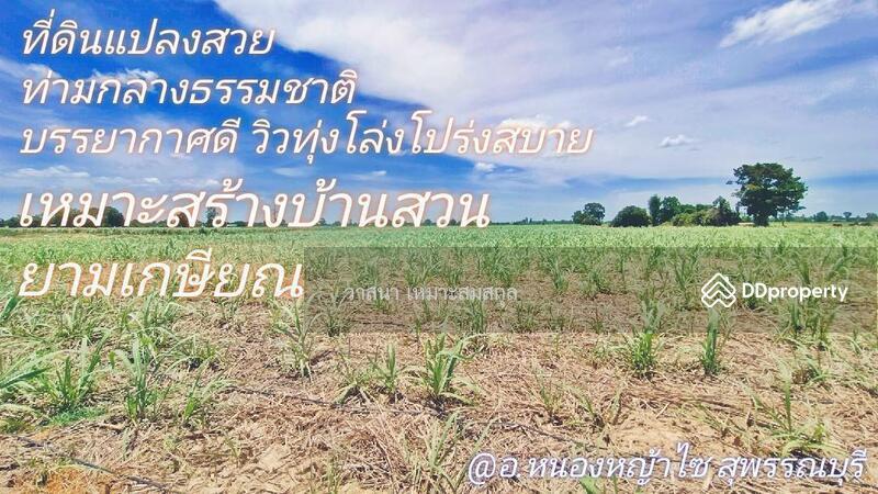 อ.หนองหญ้าไซ สุ #86982396