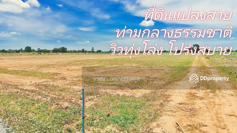 อ.หนองหญ้าไซ สุ #86982406