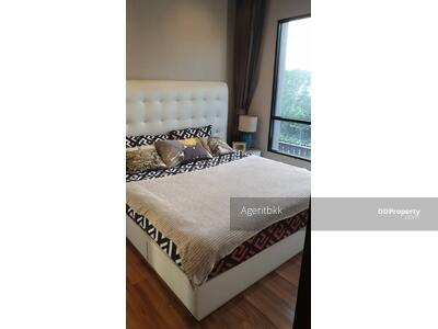 ให้เช่า - NC21180518 ให้เช่า/For Rent Condo Ivy Ampio (ไอวี่ แอมพิโอ) 1นอน 44ตร. ม ห้องสวย เฟอร์ครบ พร้อมอยู่