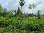 R045-004 LD-01266 : ขายที่ดิน 194 ตารางวา บ้านสัปปโคน