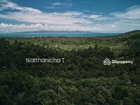 ขาย - ถูกนี้ไม่มีอีกแล้วที่ดินแปลงสวยซีวิว19ไร่ โฉนด ราคาเพียงไร่ละ1. 29 ล้าน