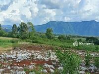 ขาย - ทีดินสวย 13 ไร่ วิวเขาล้อม  2. 5 ล้านต่อไร่ ตำบลหมูสี อำเภอปากช่อง